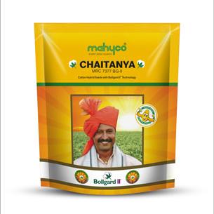 Chaitanya (MRC-7377 BG-II)