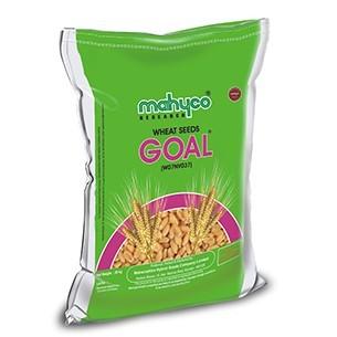 Goal (W07NV037)