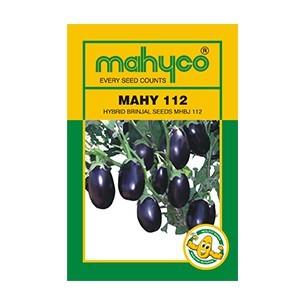 MAHY 112(MHBJ 112)
