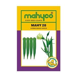 MAHY 28