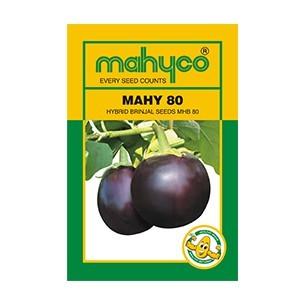 MAHY 80 (MHB 80)