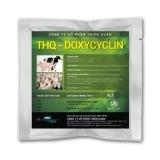 Thq- Doxycyclin