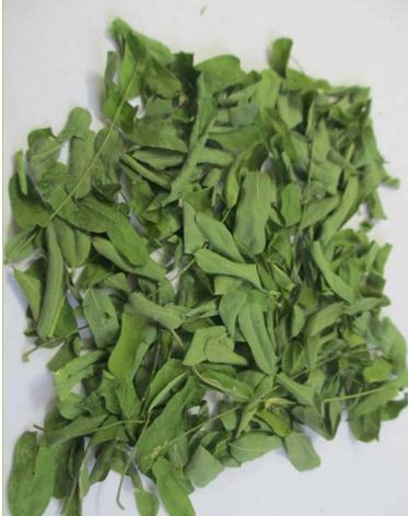 Abrus Precatorius Leaves In Virudhunagar Tamil Nadu Balaji Traders