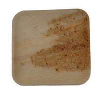 Palm Leaf 8 Inch Square Plate