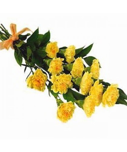 Stary yellow carnations flowers in hyderabad telangana book the cake stary yellow carnations flowers in saroornagar mightylinksfo