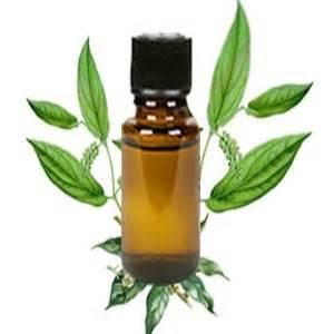 Natural Camphor Oil