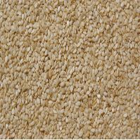 Superior Quality Natural White Sesame Seed