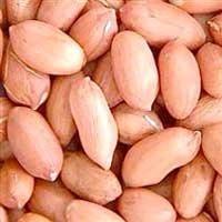 Common Peanut