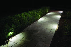 Motion Sensor Path Light
