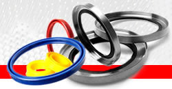Hydraulic Seal Selection Guide