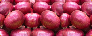 Fresh red onions in  Egmore