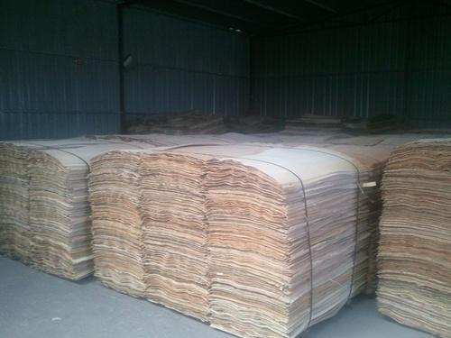 Eucalyptus Core Veneer for Packing Plywood