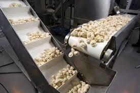 Food Grade Conveyor Belts