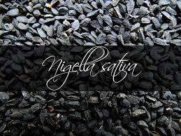 Nigella Sativa Suppliers, Nigella Sativa Exporters & Manufacturers