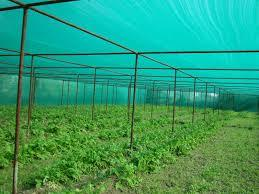 High Quality Agro Shade Net