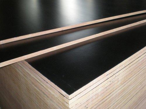 Everest Shuttering Plywood in  Mulund (W)