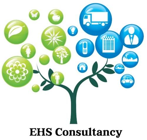 Ehs Consultant