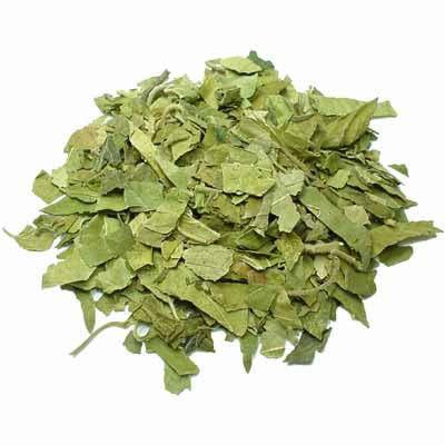 Dried Gymnema Sylvestre