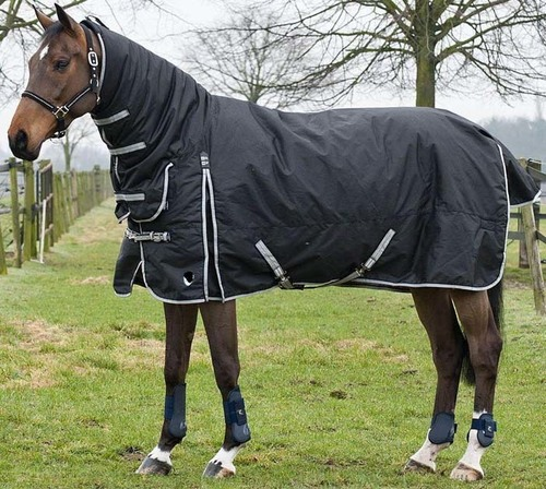 Lightweight Turnout Rugs at Best Price
