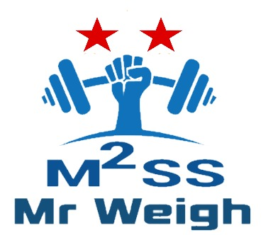 Mr Weigh - Weigh Bridge Online Billing Software With Image