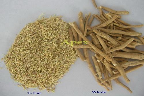 Ashwagandha Root Tbc