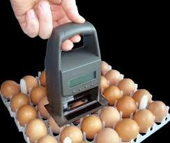 Lcd Display Eggs Printer