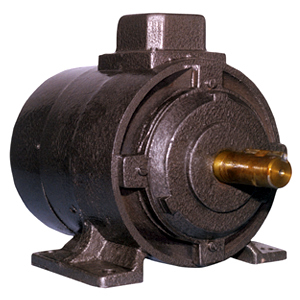 Power Looms Motor