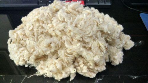 Cotton Willowed Waste