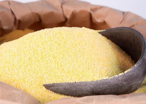Yellow Corn Meal in   New Pachha Peth