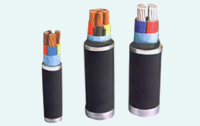 Pvc & Xlpe Insulated Power Cables