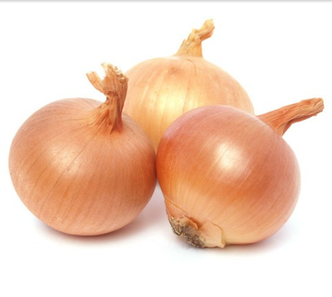 Export Quality Onions