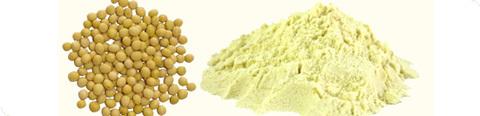 Vigor Soy Flour