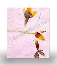 Pressed Flower Paper