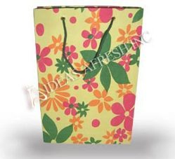 Printed Paper Gift Bags