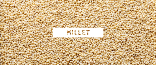 Red And Green Millet