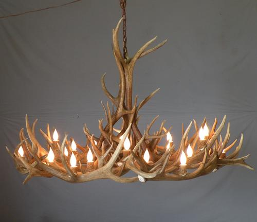 Antler chandeliers in mumbai maharashtra india neo light lights antler chandeliers in lohar chawl aloadofball Choice Image