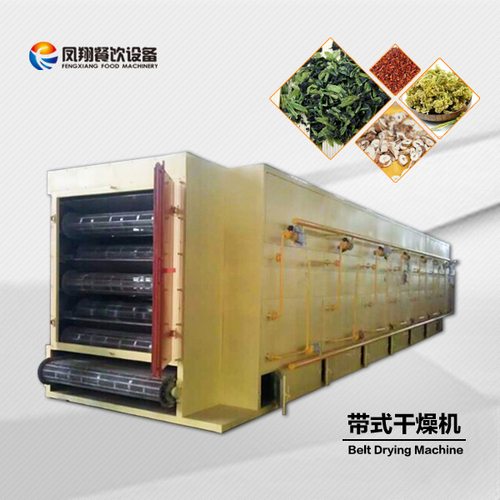 Fruit Mesh Belt Dryer Machine