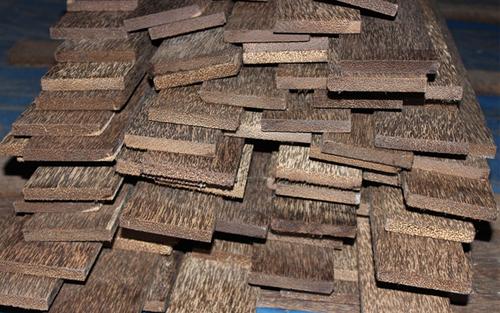 Palm Wood
