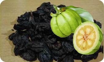 Garcinia Cambogia Rinds At Best Price In Chennai Tamil Nadu