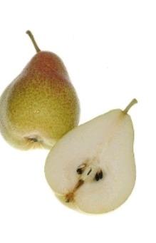 Pear (Moti Dandi)
