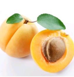 Apricot (Khurmani)