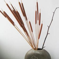 Dry Flower Stick