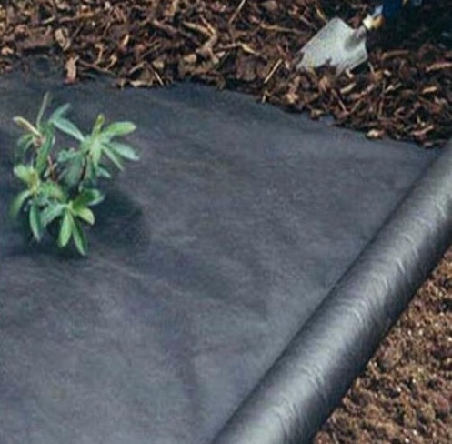 Pp Ground Cover in   Kala AMB