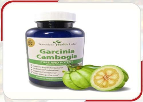 Garcinia Cambogia Extract 60 Hca At Best Price In Chennai Tamil