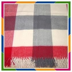 Light Weight Picnic Blankets
