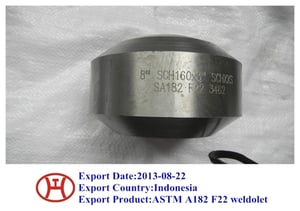 ASTM A182 F22 Weldolet