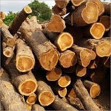 Togo Teak Wood