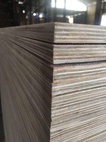Packing Eucalyptus Plywood