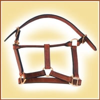 Stable Head Collar