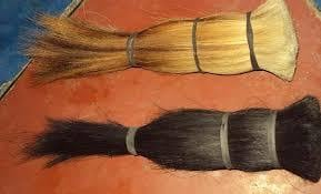 Cattle Tail Hairs